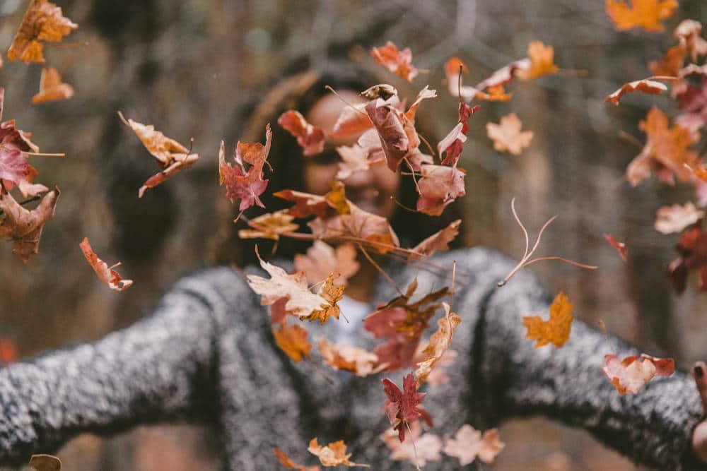 autunno_foglie_che_cadono
